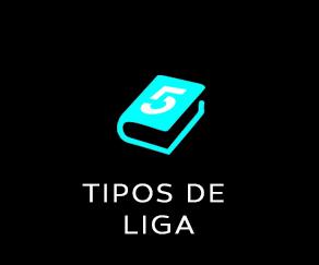 TIPOS DE LIGA